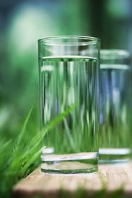 glass of water with greens