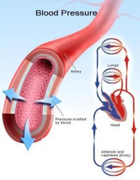blood pressure diagram