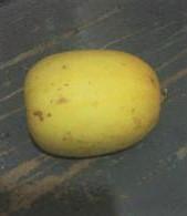 Is that 2 ounces of lemon?