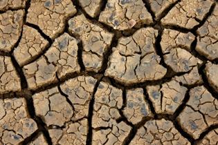 dry, parched soil