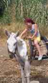 Grandaughter on Anna's donkey